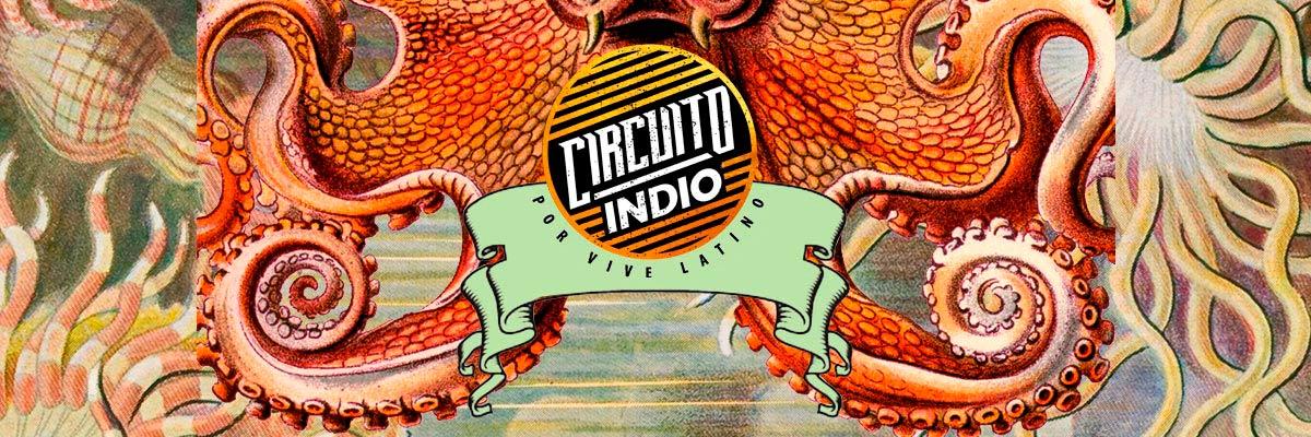 CIRCUITO INDIO - CICLO 3
