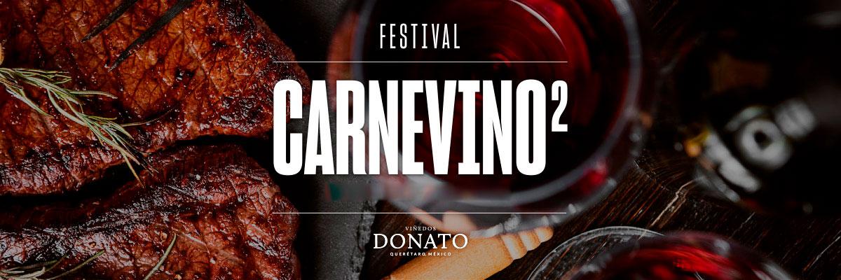 FESTIVAL CARNEVINO