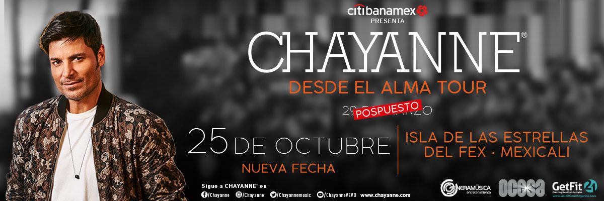 CHAYANNE - PLATINO - ATENCIONES ESPECIALES