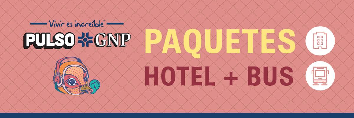 PAQUETES PULSO DESDE CDMX. - TRANSPORTE + HOTEL DOMUN
