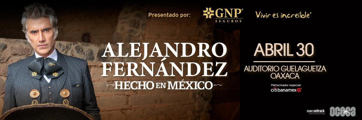 ALEJANDRO FERNÁNDEZ - HECHO EN MÉXICO